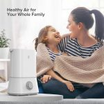 Ultrasonic Humidifiers for Large Room